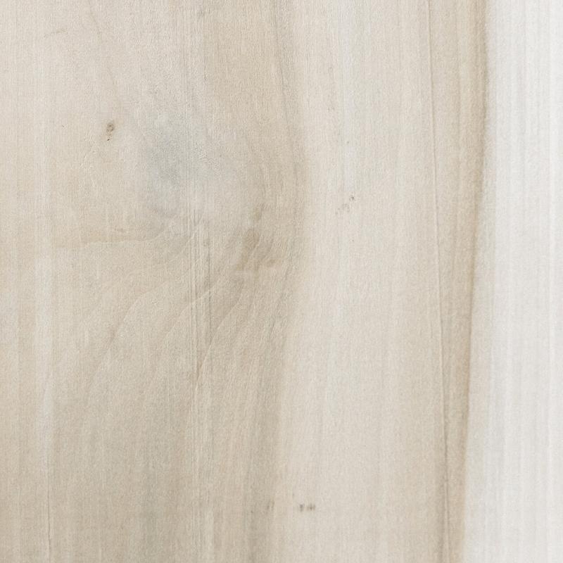 Photo of poplar